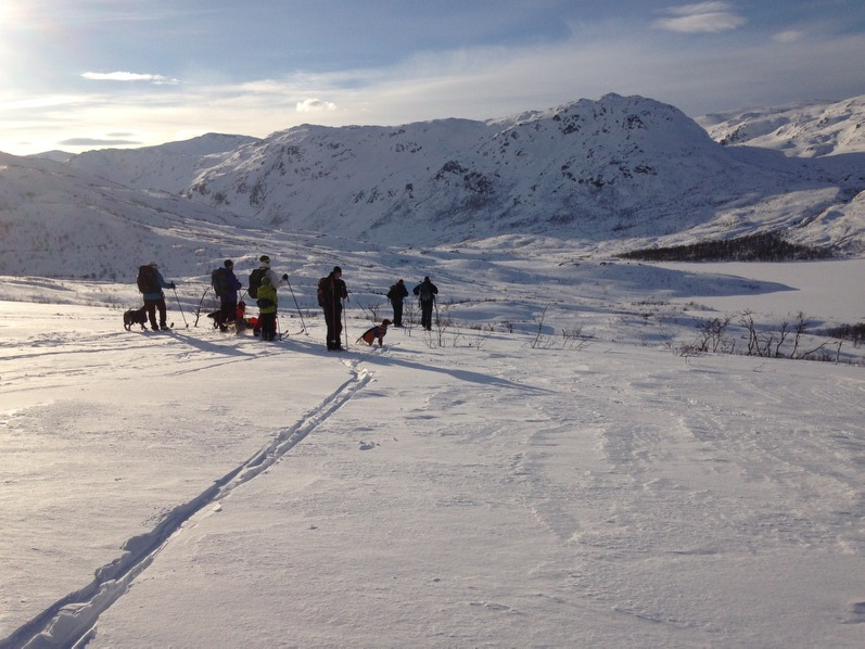 Jakt og hundeutvalg Karlsoy jeger u2013 og fiskeforening